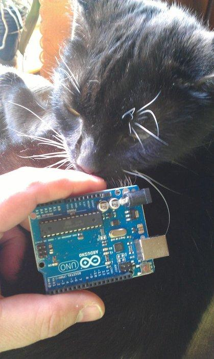 Arduino Controlled Window for Cat